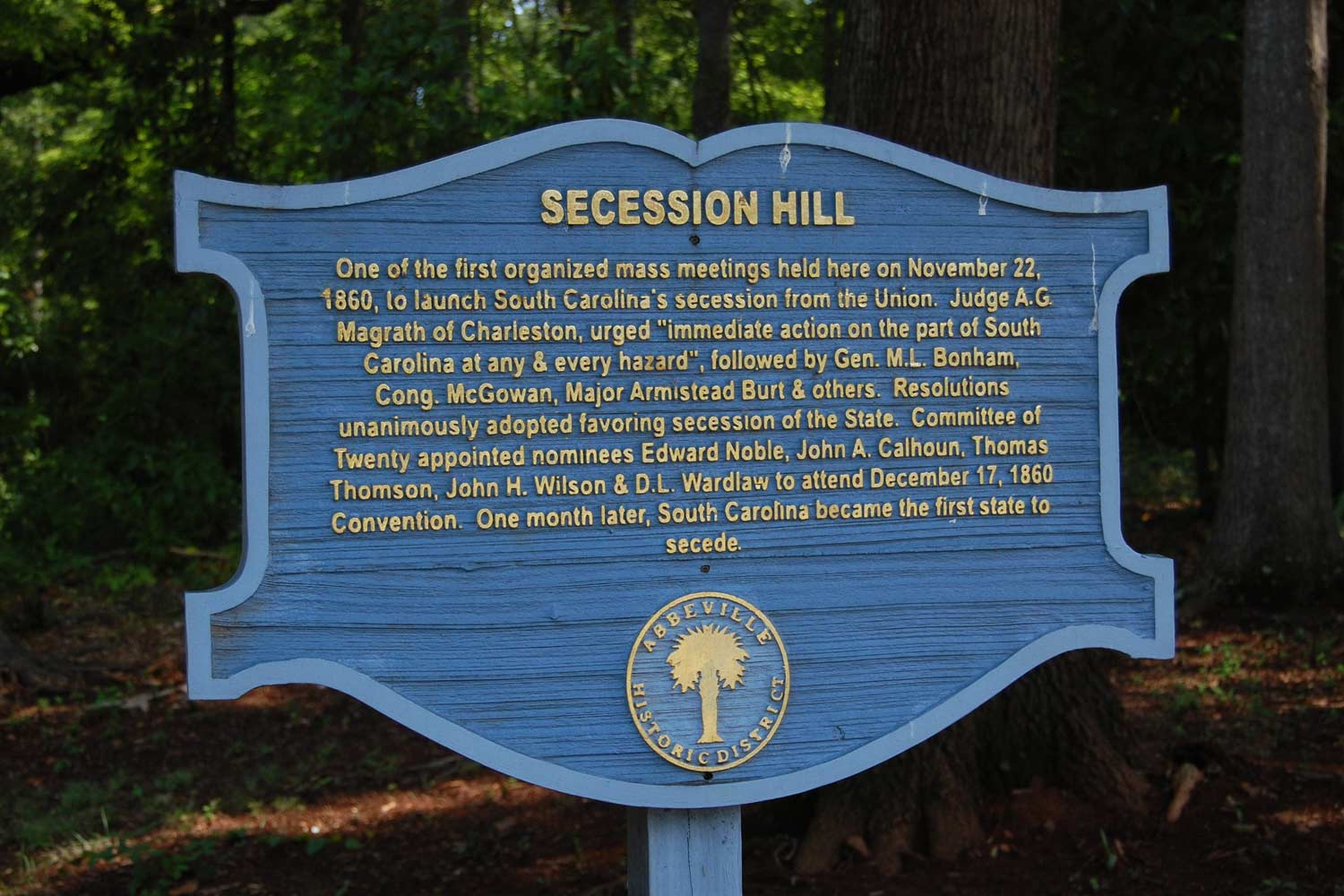 Abbeville Secession Hill