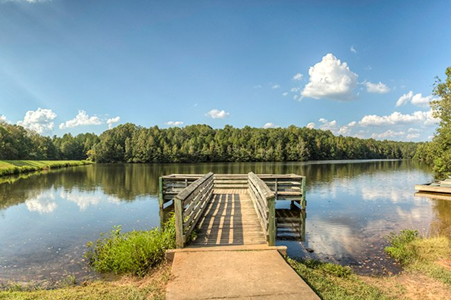 Andrew Jackson State Park