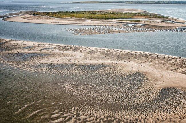 Bird Key Folly Beach