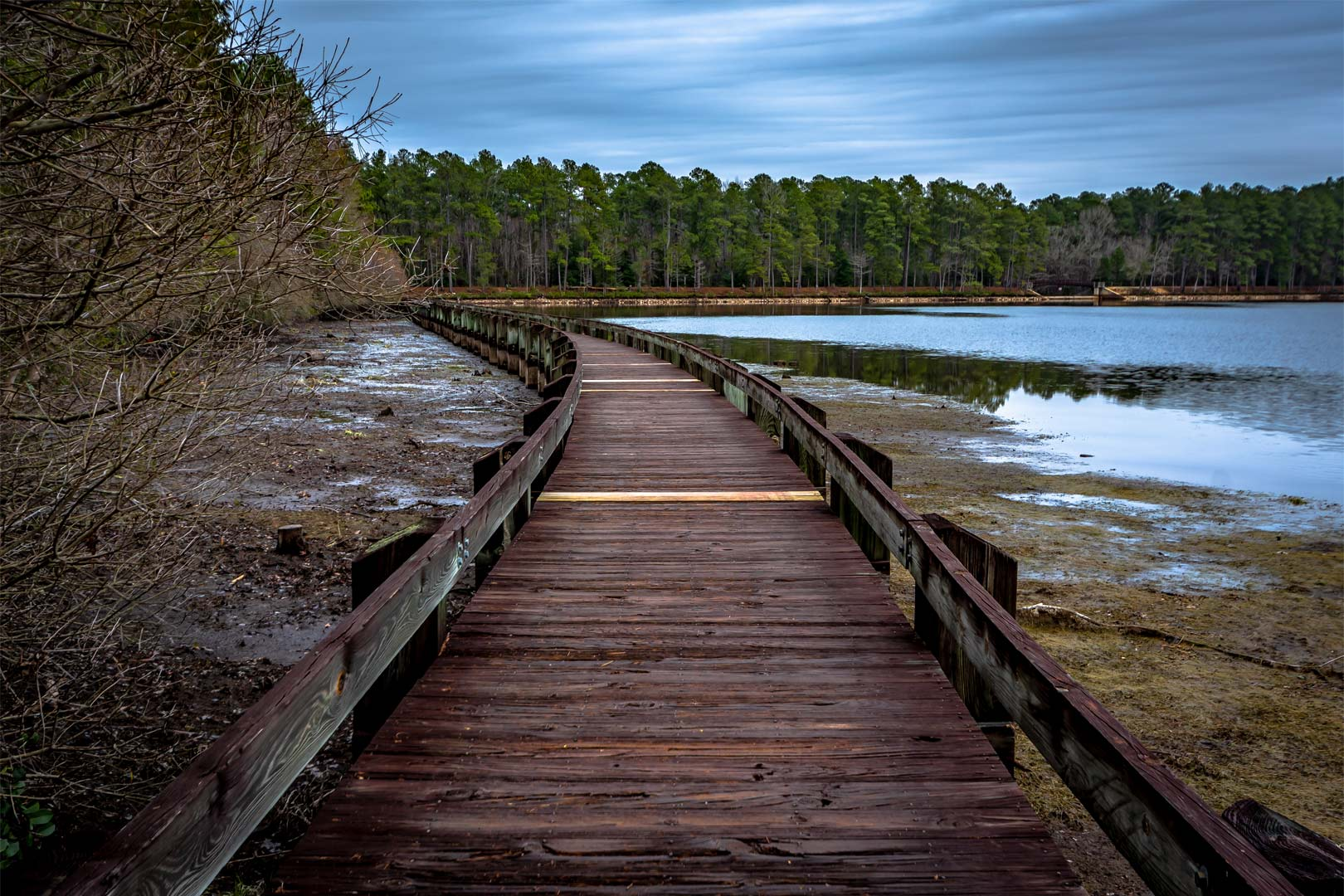 Boardwalk in Cheraw State Park