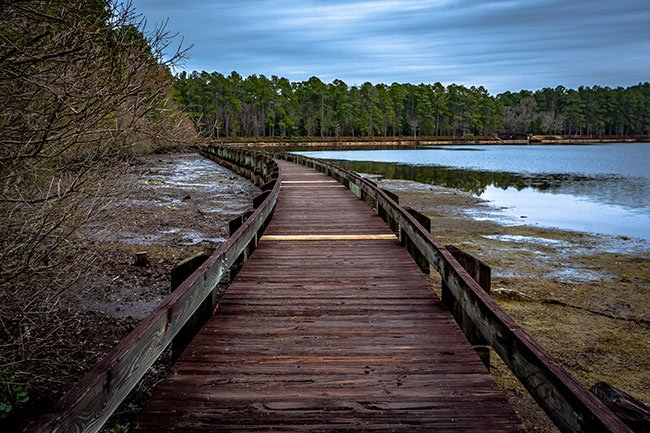 Boardwalk at Cheraw State Park