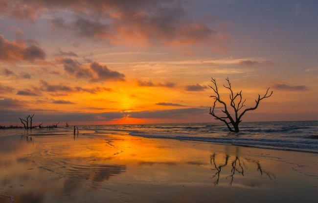 Boneyard Beach Cape Romain