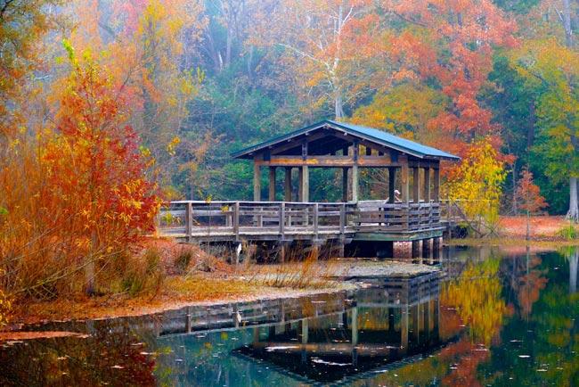 Brick Pond Fishing Pier
