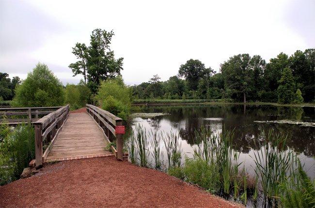 Brick Pond Park Pier