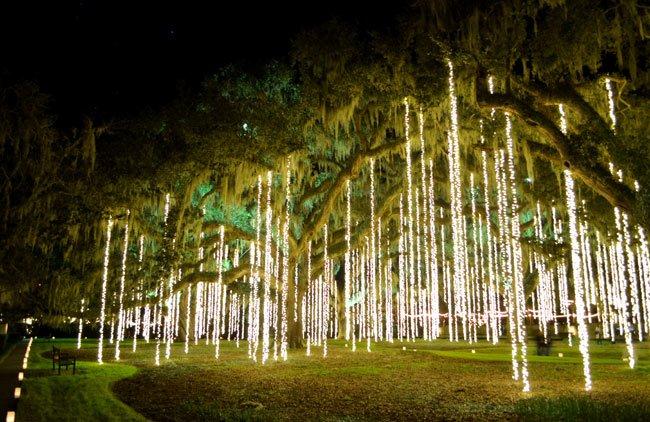 Brookgreen Gardens Lights