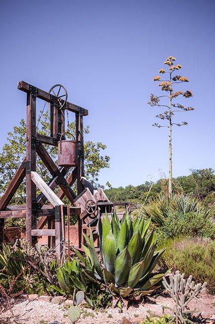 Clemson Botanical Gardens Sculpture