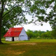Barn at Cottontop Farm
