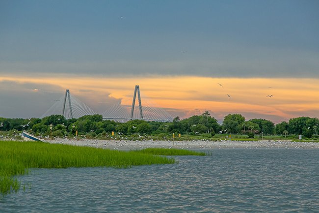Crab Bank with Ravenel Bridge