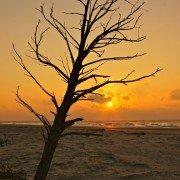 Dewees Island, South Carolina