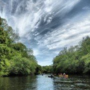 edisto River above Cannadys