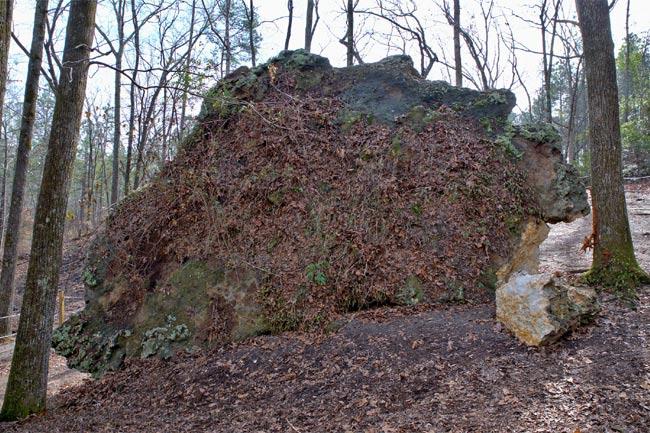 Fallen Peachtree Rock