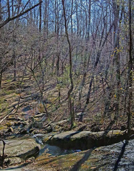 Forty Acre Rock Heritage Preserve