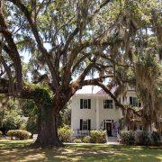 Frampton Plantation Under Oaks