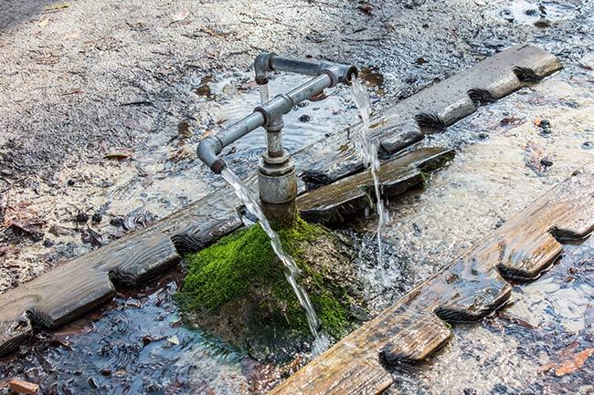 God's Acre Healing Springs