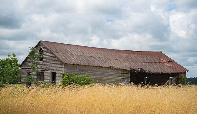 Govan Farm Building, Side View