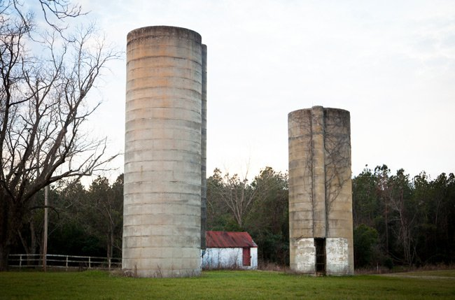 Guess Dairy Farm