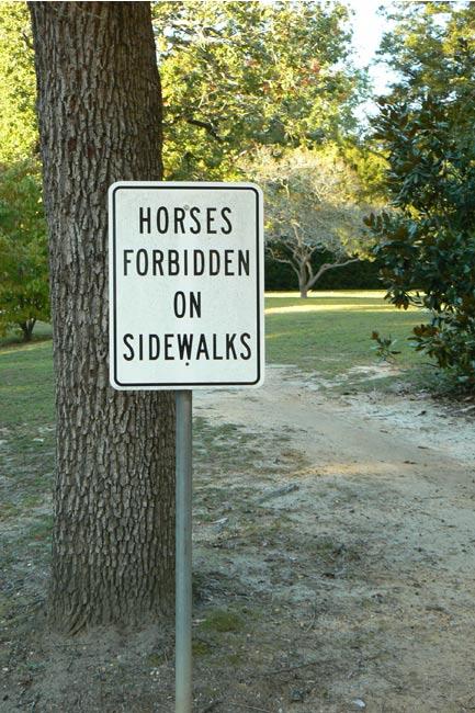 Horses Forbidden on Sidewalks