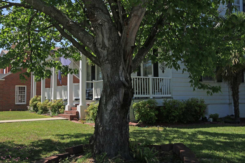 John Craig House: Rain Porch Columns