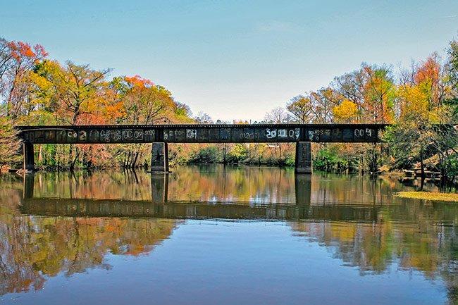 Johnsonville, SC Lynches River