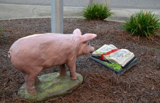 Kingstree Library Pig