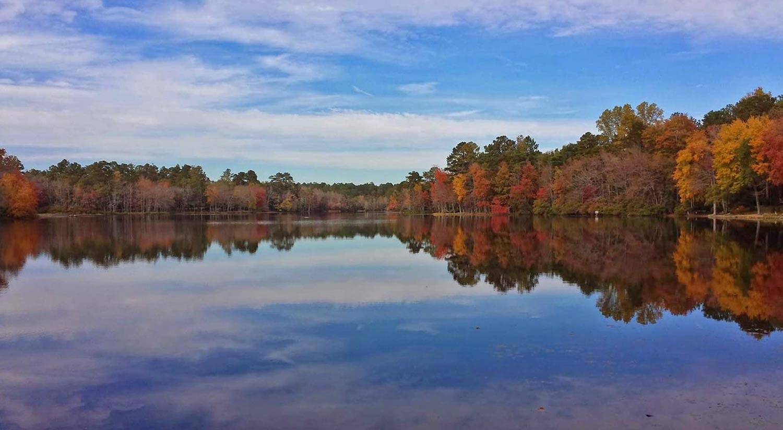 Lake Kendall in Camden, SC