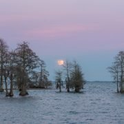 Lake Moultrie Moon