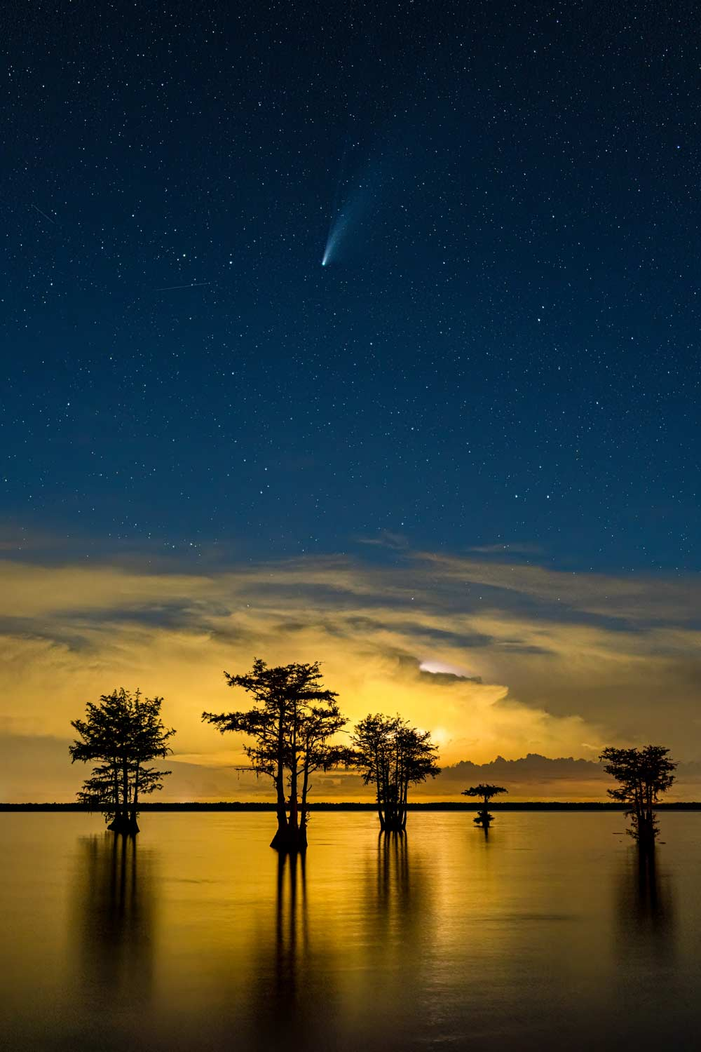 Lake Moultrie, NEOWISE