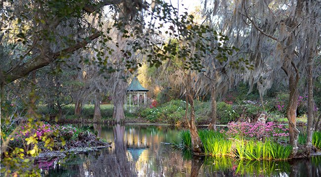 Magnolia Plantation and Gardens Scene