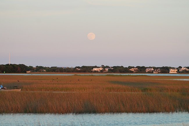 Moonrise over Pitt Street Bridge