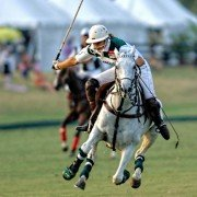 New Bridge Polo in Aiken SC