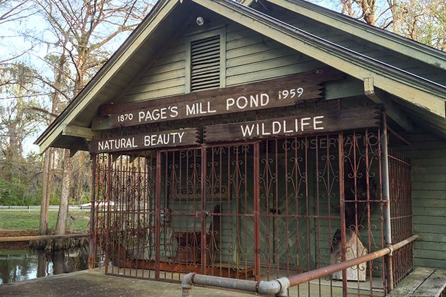 Page's Mill Pond Exterior