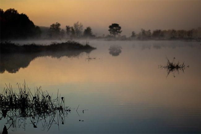 Parr Reservoir