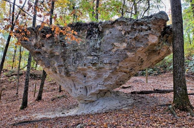 Peachtree Rock Heritage Preserve
