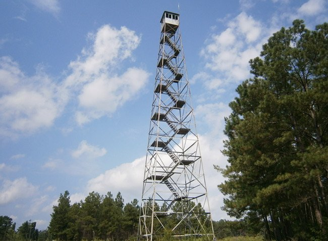 Pineville Lookout Tower