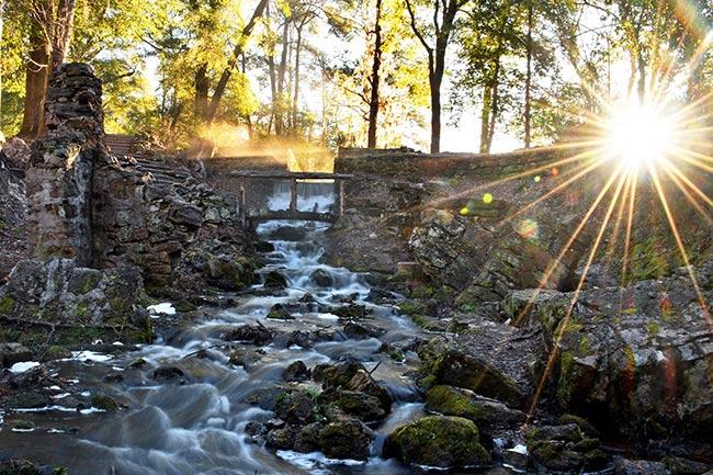 Poinsett State Park Sunrise