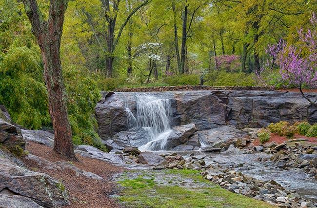Rock Quarry Garden, Greenville