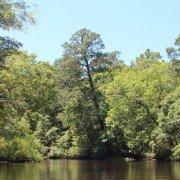 Salkehatchie River Yemassee