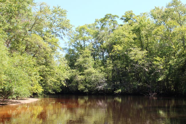 Salkehatchie River
