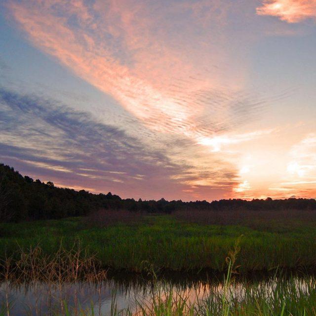 Santee River in South Carolina