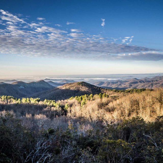 Sassafras Mountain View