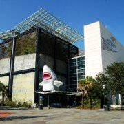 Charleston Aquariums and Zoos