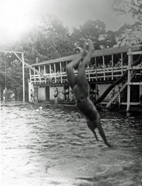 Segars Mill Diver