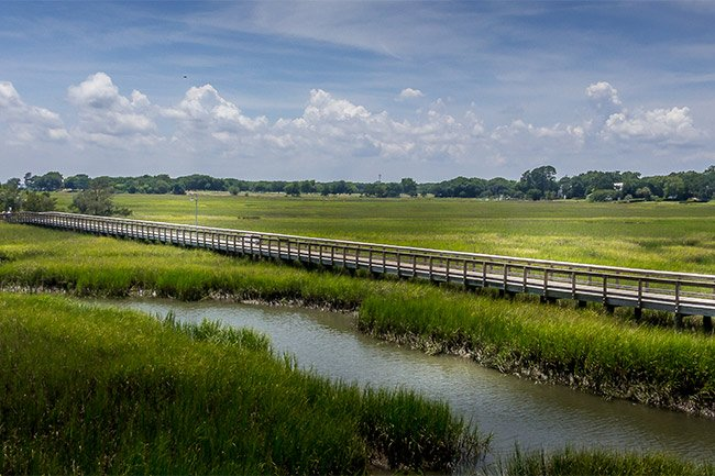 Shem Creek Marsh View