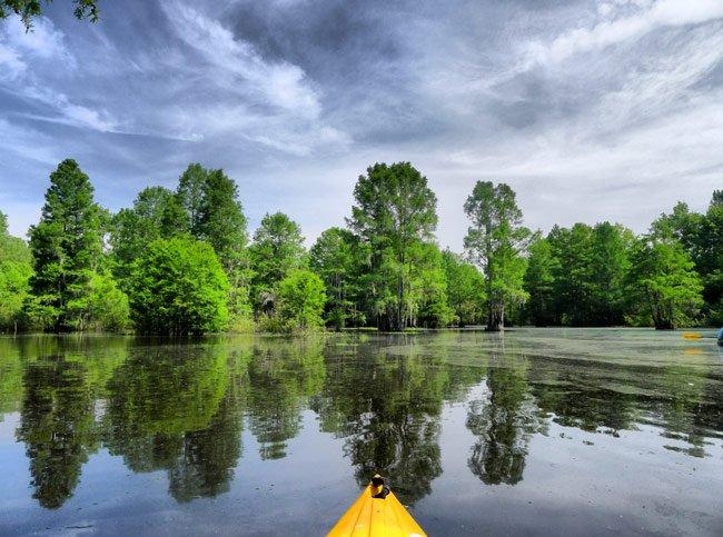 Sparkleberry Kayak