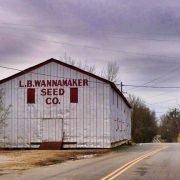 Wannamaker Seed Company