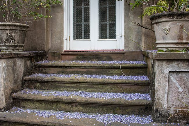 William Mason Smith House Steps